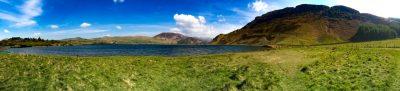Grass and Lake